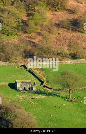 High view of isolated, dilapidated, ruined field barn lit by sun on hillside slope & farmland in scenic Yorkshire Dales - North Yorkshire, England, UK - Stock Photo