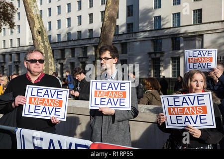 London, UK. 14th November, 2018. Pro-Brexit activists from Leave Means Leave protest outside Downing Street on the day on which Prime Minister Theresa May convened an emergency Brexit Cabinet meeting to seek Cabinet approval of a draft of the final Brexit agreement. Credit: Mark Kerrison/Alamy Live News - Stock Photo