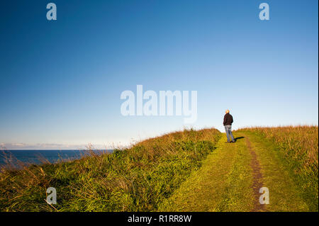 Person takes in the ocean views along the Kaikoura Coastal Track. Hiker stands on green, grassy clifftop with clear blue sky background . - Stock Photo