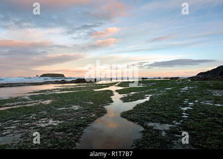 OR02381-00...OREGON - Clouds reflecting in tide pools at sunrise at Devil's Punchbowl State Natural Area near Newport. - Stock Photo