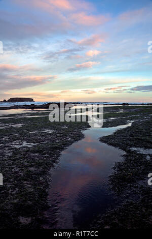OR02382-00...OREGON - Clouds reflecting in tide pools at sunrise at Devil's Punchbowl State Natural Area near Newport. - Stock Photo
