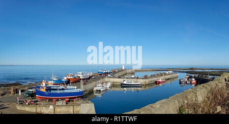 Panoramic view of fishing boats in and around Seahouses Harbour, Northumberland, UK, - Stock Photo