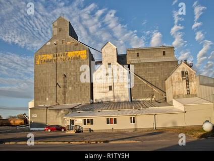 Harvey 'Farmers Elevator'  & the older 'Farmers Union' elevator to the right, early morning light, Harvey, North Dakota. - Stock Photo