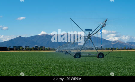 A centre pivot irrigator on a farm supplies water to pastures and crops on farms in Canterbury, New Zealand - Stock Photo