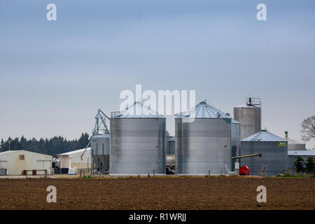 Large silos for grain storage on a farm in New Zealand - Stock Photo