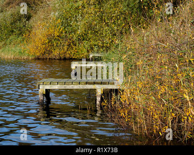Autumn colours and fishing platforms in the reed beds of Rollesby Broad, part of the Trinity Broads nature conservation area in Norfolk. - Stock Photo
