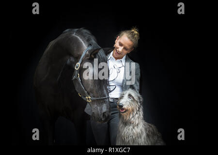 Pure Spanish Horse, Andalusian. Black gelding with owner and Irish Wolfhound, seen against a black background. Germany - Stock Photo