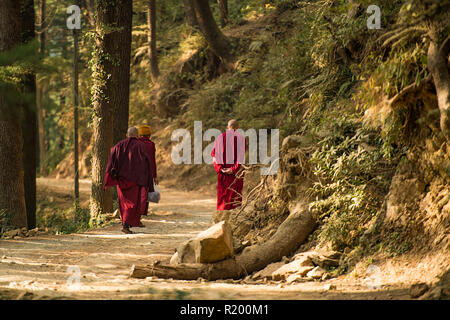 Three Buddhist monks are walking on a mountain trail in the north of India, Dharamsala, India. - Stock Photo