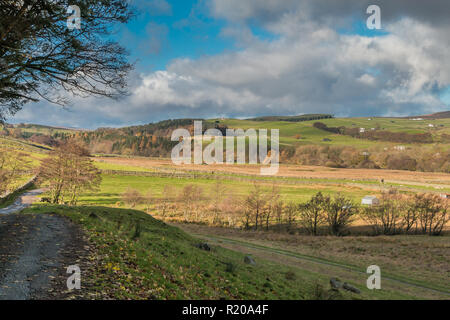 North Pennines AONB Landscape, towards Ettersgill from Holwick, Upper Teesdale with autumn colours and strong sunshine - Stock Photo