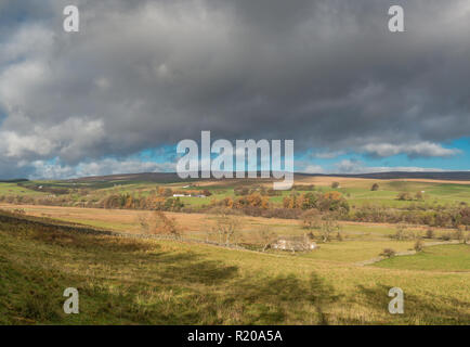 North Pennines AONB Panoramic Landscape, towards Ettersgill from Holwick, Upper Teesdale with autumn colours and strong sunshine - Stock Photo