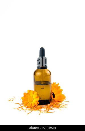 Calendula officinalis the pot marigold, ruddles, common marigold or Scotch marigold, plant tincture or oil in small brown glass medical pipette bottle - Stock Photo