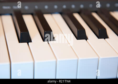 Black and white keys on an electronic piano keyboard - Stock Photo