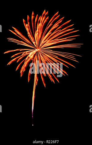 Firework. - Stock Photo