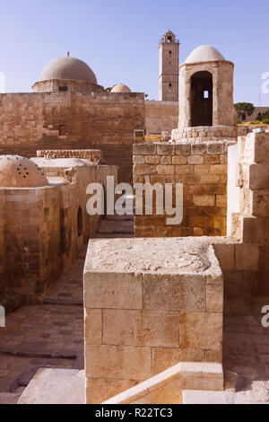 Aleppo, Aleppo Governorate, Syria : Inside the Citadel of Aleppo, a large medieval fortified palace in the centre of the old city. The site has been i - Stock Photo