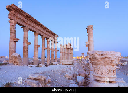 Palmyra, Homs Governorate, Syria - May 26th, 2009 :  Great Colonnade of Palmyra at dusk. Built  during the second and third century CE, it stretched f - Stock Photo