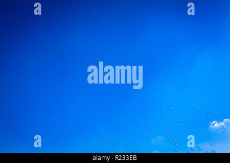 Lot of flying soap bubbles at blue sky background (copy space) - Stock Photo