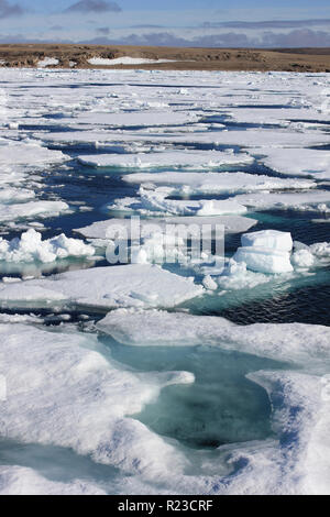 Pack Ice In Resolute Bay, Nunavut, Canada as viewed from CCGS Amundsen - Stock Photo