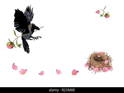 Crow flying with flower in beak. Mother bird builds her nest with peony petals, watercolor hand drawn. Illustration for romantic, greeting or invitati - Stock Photo