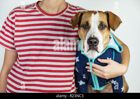 Person and dog in stars and stripes costumes. Patriotic concept: woman and puppy dressed in symbolic clothes of US flag - Stock Photo