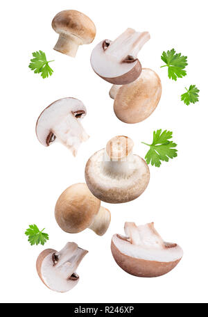Flying mushrooms  isolated on white background with clipping path - Stock Photo