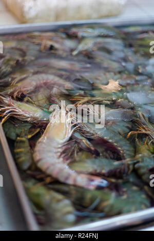 Thai raw prawns on local market in Krabi. Traditional way of selling fresh seafood in south east Asia. - Stock Photo