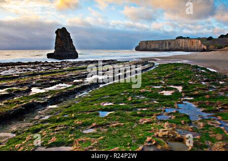 Davenport Beach, a.k.a. San Vicente Beach, is the southern beach of two beaches right in the little town of Davenport, California. This beach is easil - Stock Photo
