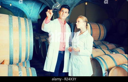 Two concentrated wine house workers checking quality of product in cellar - Stock Photo
