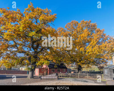 Autumn colours in the Pit Village and Colliery, Beamish Open Air Museum, Beamish, County Durham, England UK - Stock Photo