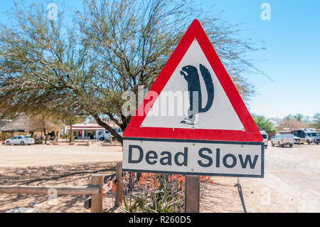dead slow sign, meerkat, town, Solitaire, Namibia - Stock Photo