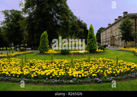 Floral display on a roundabout in the Montpellier Quarter, Harrogate, North Yorkshire, England - Stock Photo