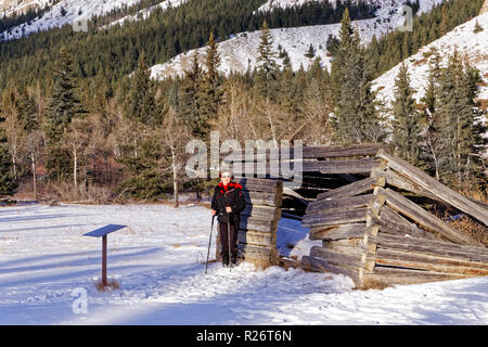 42,750.09107 close up, Woman person hiking standing in snow flat at Moberly Log Cabin built in about 1909, Jasper National Park, conifer forest backgr - Stock Photo