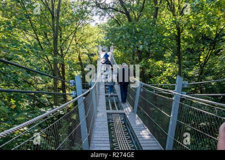 'Baumwipfelpfad', Treetop walkway through a forest in autumn, Bad Harzburg, Harz mountain range, Lower Saxony, Germany - Stock Photo