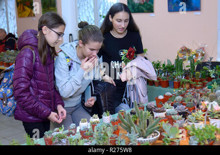 At the flower shop. Seller keeping a pot with cactus and talking to a  customer. Kiev, Ukraine. October 12, 2018 - Stock Photo