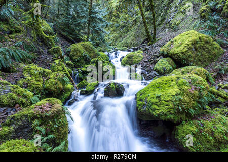 Cascading Waterfalls and stream, moss covered rocks. Iconic Oregon image, Pacific Northwest - Stock Photo