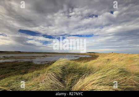 Saltmarshes at Thornham on the North Norfolk coast. - Stock Photo