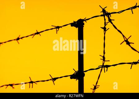 silhouette of a fence of barbed wire on an sky background. - Stock Photo
