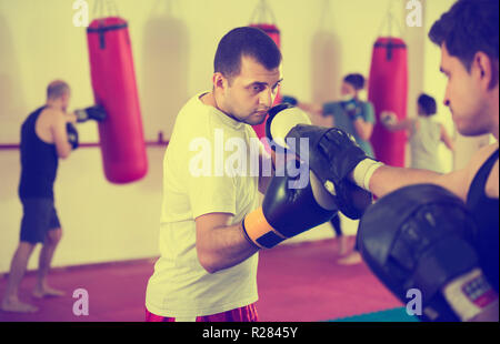 Portrait of young concentrated sportsmen competing in boxing gloves - Stock Photo