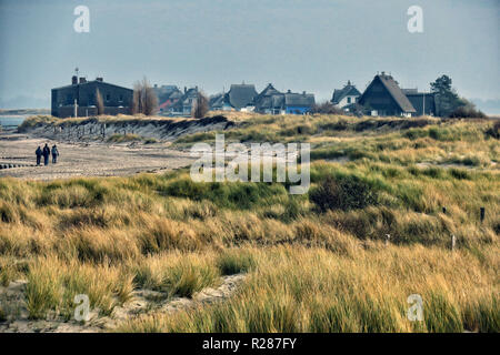 Heiligenhafen, Germany. 10th Nov, 2018. Houses on Graswarder. The harbour town on the Baltic Sea in the district of Ostholstein is a state-approved sea spa. Main source of income has also been since the extensive investment in infrastructure tourism. Credit: Soeren Stache/dpa-Zentralbild/ZB/dpa/Alamy Live News - Stock Photo