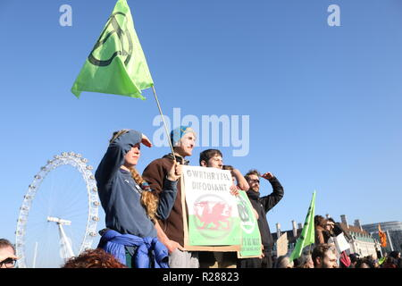 Westminster, London, UK. 17th November 2018. Protests in London. Credit: Ademola Alashe/Alamy Live News - Stock Photo