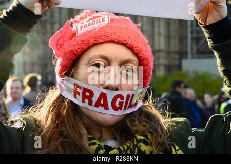 London, UK. 17th November 2018. Climate change activists from Extinction Rebellion occupied Westminster Bridge and four other London Bridges in a non violent protest,London.UK Credit: michael melia/Alamy Live News - Stock Photo