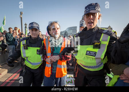London, UK. 17th November, 2018. Environmental campaigners from Extinction Rebellion block Lambeth Bridge, one of five bridges blocked in central London, as part of a Rebellion Day event to highlight 'criminal inaction in the face of climate change catastrophe and ecological collapse' by the UK Government as part of a programme of civil disobedience during which scores of campaigners have been arrested. Credit: Guy Corbishley/Alamy Live News