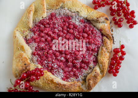 Currant Berry - Stock Photo