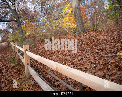 Large Wooden Fence Around a Colorful Forest With a Pile of Dry Leafs in the Ground - Stock Photo