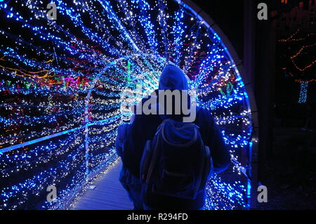Outdoor Christmas holiday light tunnel with people walking through celebrating the season - Stock Photo