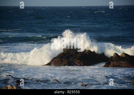 Monterey, California. Afternoon waves. - Stock Photo