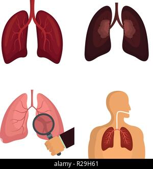 Lung organ human breathing icons set. Flat illustration of 4 lung organ human breathing vector icons isolated on white - Stock Photo