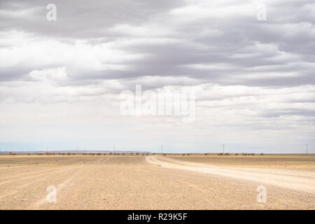 Faraway view of endless herd of Bactrian camels on the move in the vast Gobi desert landscape. - Stock Photo