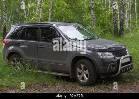 SUV in nature in the summer forest - Stock Photo