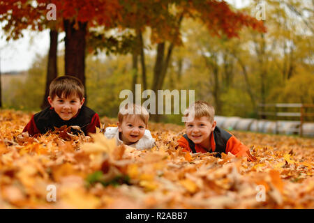 three boys playing in the Autumn leaves in the country - Stock Photo