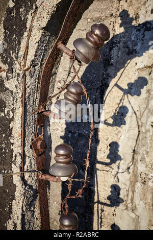 Old rusty barbed wire fence close up picture. - Stock Photo